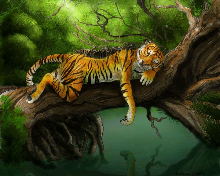 My tiger OC Lute just chillin in a tree Art by Aunumwolf42 ...