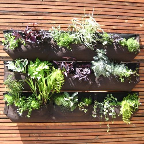 Wally three living wall planter well being by me for Living wall planter