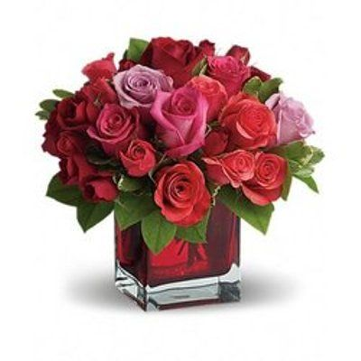 Send Someone Online Flowers Tomorrow, http://washingtondc.eventful.com/events/send-flowers-tomorrow-/E0-001-089519730-7@2015120814, Deliver Flowers Tomorrow,Flower Delivery Next Day,Flowers Delivery Next Day,Flowers Tomorrow,Cheap Next Day Flower Delivery