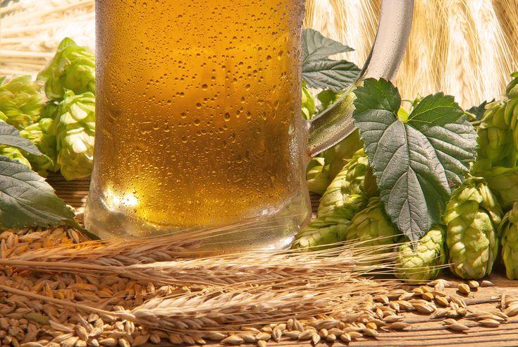 Bierbraukurs in Monschau ab 89€ als Geschenkidee
