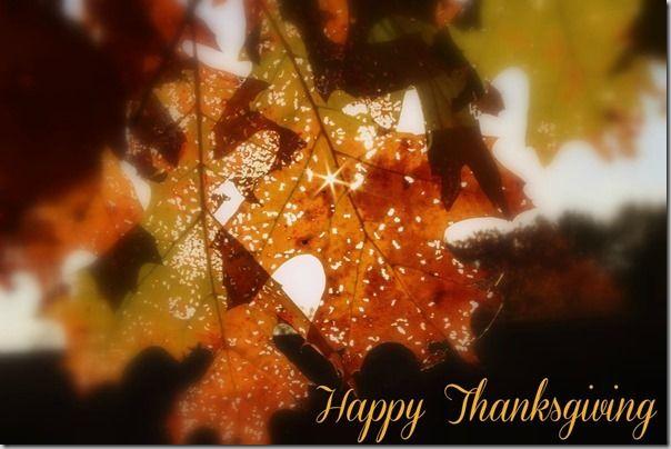 Happy Thanksgiving — RobynsOnlineWorld.com