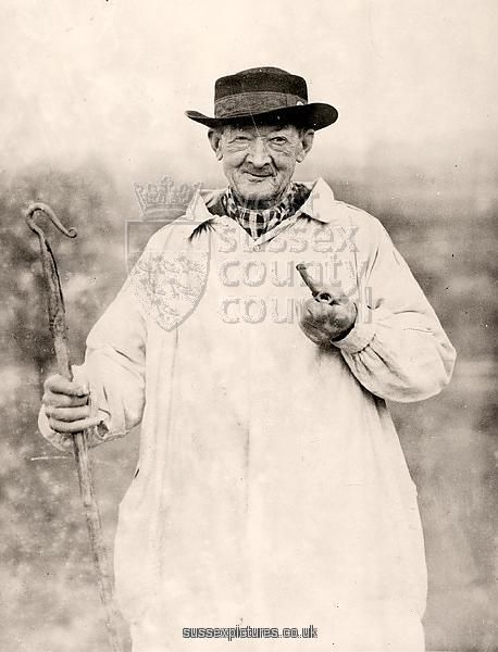 old shepherd pictures - Google Search   Smocking, Canvas ...