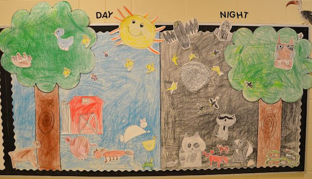 Nocturnal and Diurnal animal categories  A Place Called Kindergarten: day and night