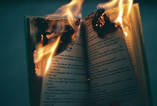 Destroy a book, deytroy a world - I can see no difference. A book is a world itself.