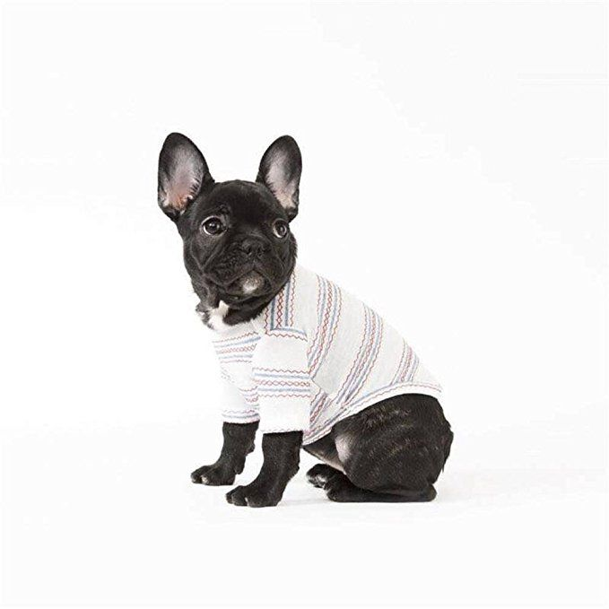 Amazon Com Petbobo Lovely Cute Pet Dog T Shirt Clothes Warm Coat Clothing For Dog Cat Puppy Kitten New Style Puppy Kitten Spri Dog Tshirt Pets Cute Animals
