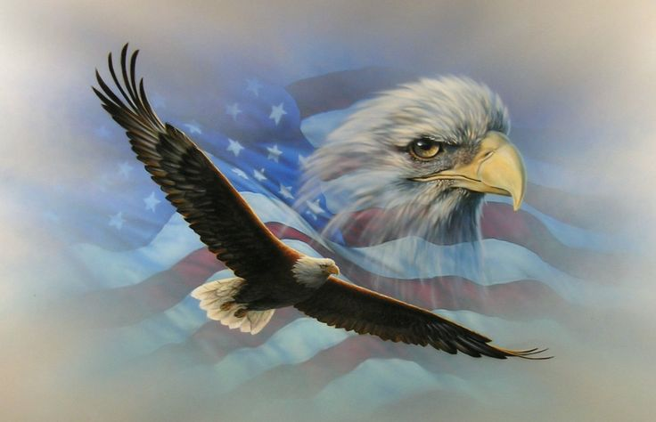 American Flag Soaring Bald #Eagle RV Trailer Wall Mural Decal Graphics Art by SuperbDecalsLLC on Etsy