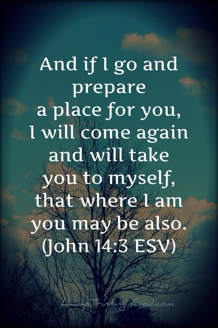 I can only imagine, what it will be like! #JESUS Verse Of The Day- John 14:3 | Trusting In God http://alwaystrustingingod.com/2014/02/verse-of-the-day-john-143.html