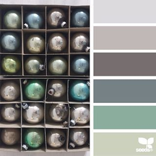 today's inspiration image for { holiday hues } is by @robinzachary ... thank you, Robin, for another inspiring #SeedsColor image share!
