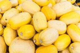 Growing spaghetti squash can be an exciting experience for both kids and adults. Read the following article to know how to grow it at home.