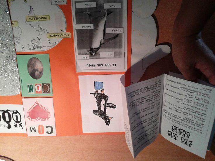 Projecte Pingüins. Presentació LAPBOOK 7