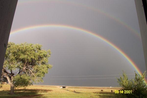 3 miles north of Wagon Mound, NM