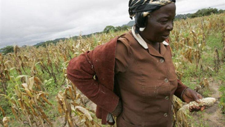 L'Afrique australe en proie à une grave crise alimentaire