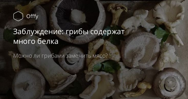 Если попросить среднестатистического человека перечислить продукты, в которых много белка, то в первой десятке продуктов обязательно будут названы грибы. Многие полагают, что грибами даже можно заменить мясо! Так ли это? #ДиетаБезДиет #Offfy #Doctor_Natalia #похудение #пп #ЗОЖ #Диетолог #грибы #СнижениеВеса #белок