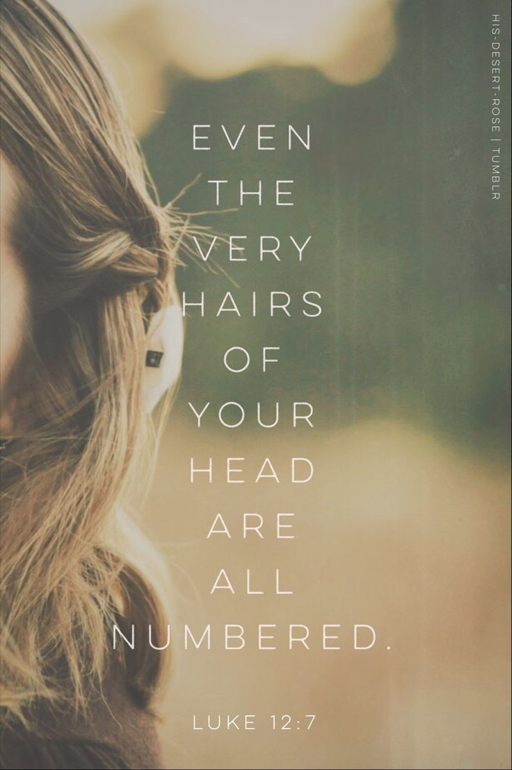 Beloved, even the the hair of your head are numbered.  He knows your heart ❤️