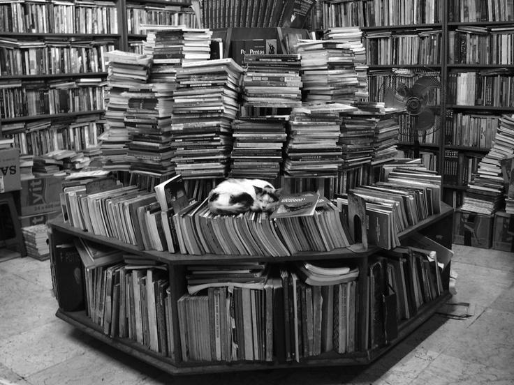 """These books making me so sleepy"""