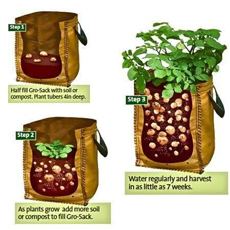 Grow potatoes in a sack ... i want to try this  http://www.vegetable-garden-guide.com/how-to-grow-potatoes.html
