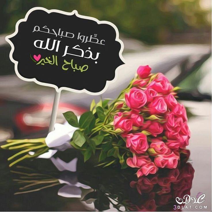 صور صباح الخير 2019 احلي الصور الصباحية 2019 أجمل صور صباحية جديدة 2019 Good Morning Flowers Good Morning Beautiful Images Good Morning Arabic