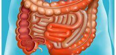 La maladie de Crohn touche 4 à 5 personnes sur 100.000 en France. Comment se manifeste-t-elle ? On fait le point à l'occasion de la journée mondiale des maladies inflammatoires chroniques de l'intestin (MICI).
