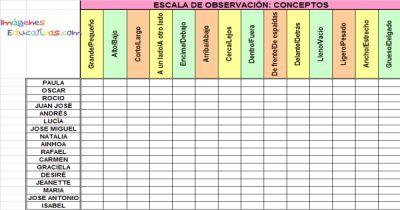 Registro de Observación3