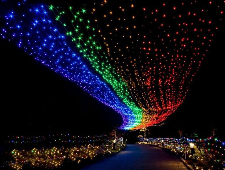 H2Whoa! Is this yearu0027s theme  sc 1 st  Pinterest & 131 best Dominion GardenFest of Lights images on Pinterest ...