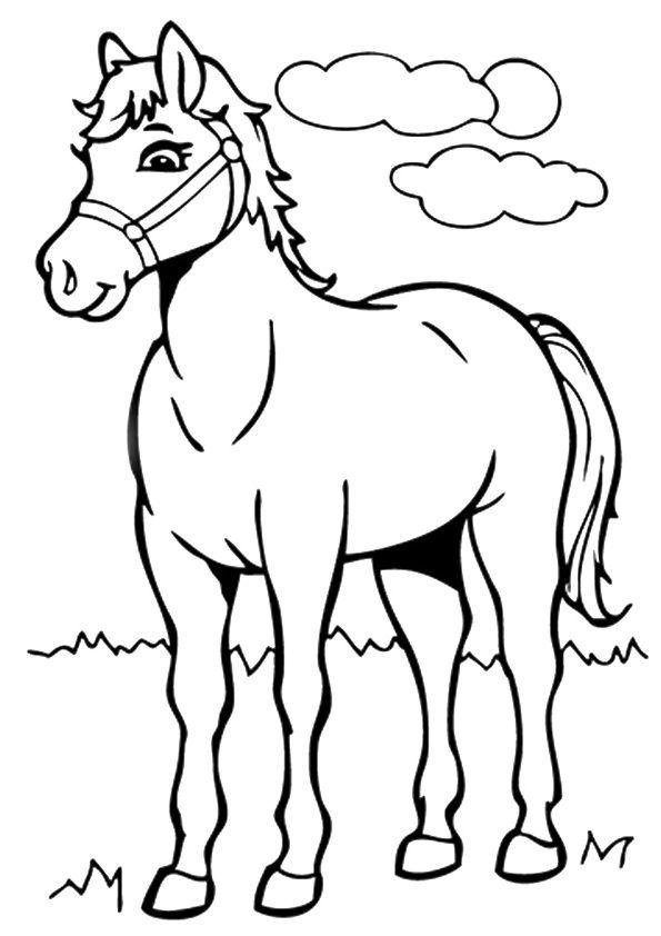 Pferde Ausmalbilder Kostenlos Malvorlagen Windowcolor Zum Drucken Ausmalbilder Pferde Malvorlagen Pferde Ausmalbilder