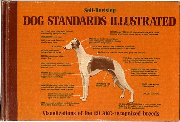 Dog Standards Illustrated on OneKingsLane.com