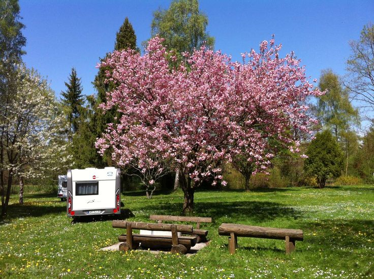 Spring at Camping am Pilsensee, Seefeld, Starnberg - Pitchup.com