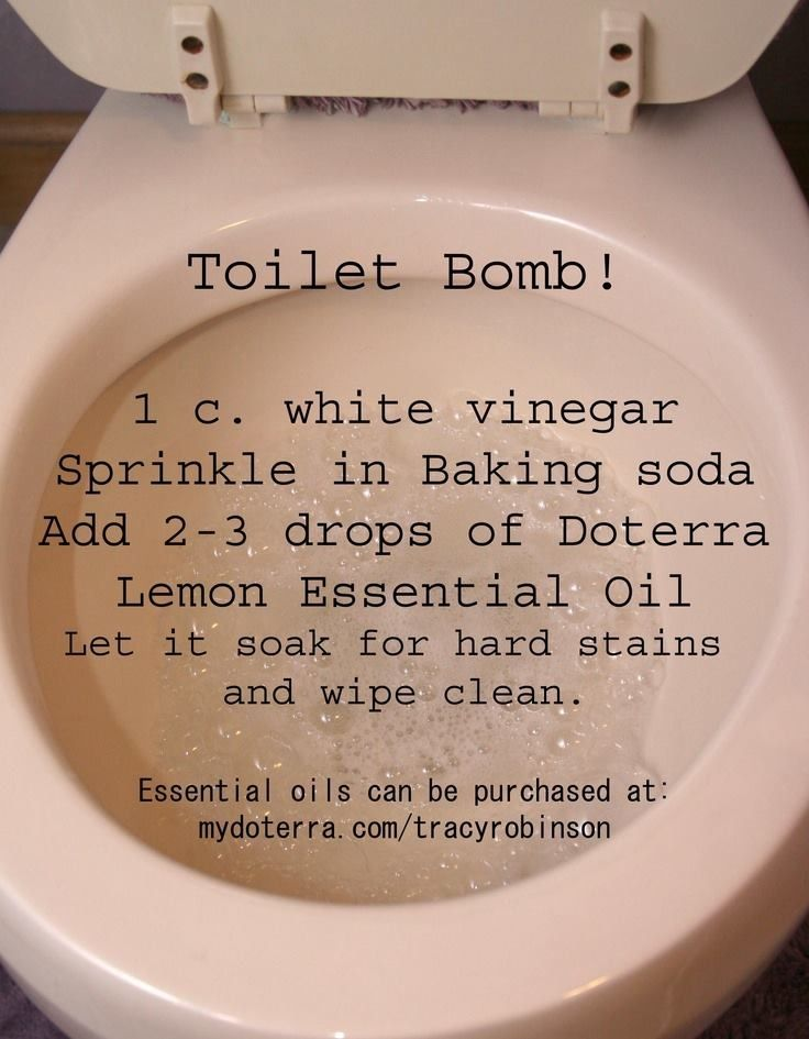 Natural toilet cleaner
