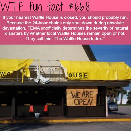The Waffle House Index - WTF fun facts. This is TRUE! I worked at one when Hurricane Rita hit SW Louisiana.