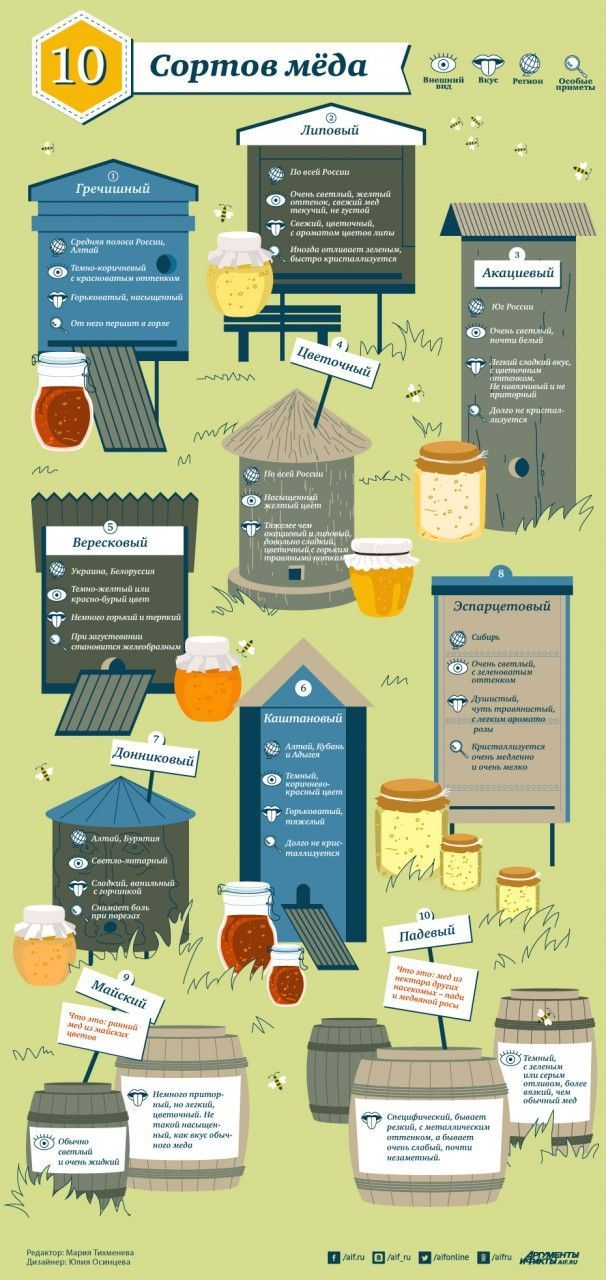 Виды мёда и их особенности. Инфографика