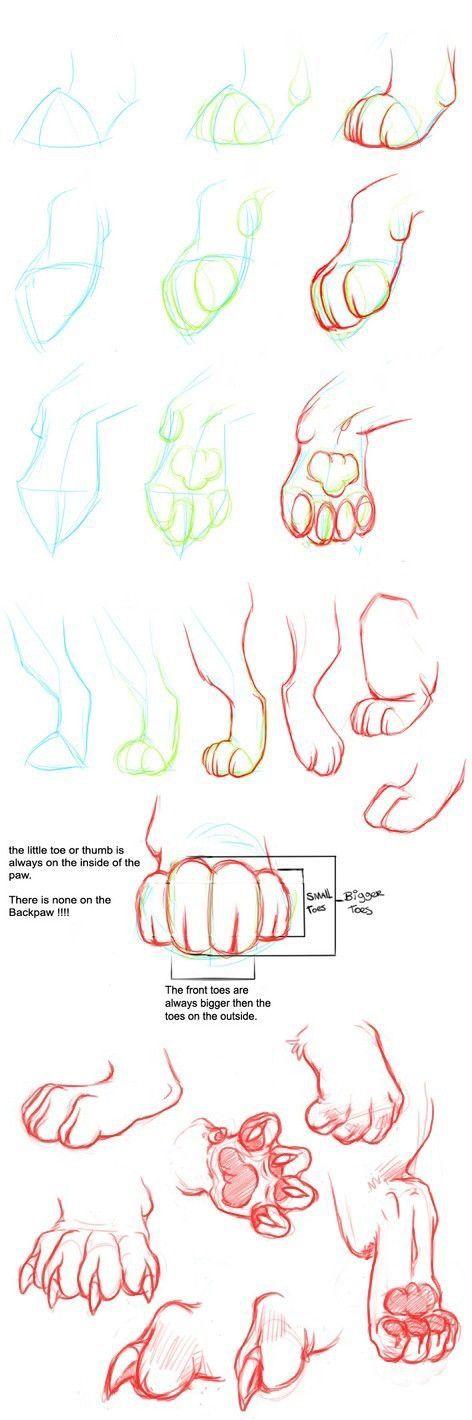 ik gebruik de 2e poot in mijn tekening, voor de voorpoten van de kat, omdat het mij maar niet lukte om zelf een poot te tekenen.
