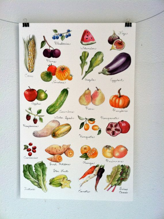 Fruits and Vegetables Print - I wonder if I could make something like this? Get Gracie to do a water colour?