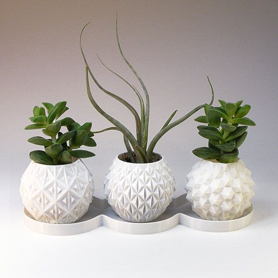 mini planter gift box succulent planters set small indoor plant pot housewarming gift - ceramic planter alternative