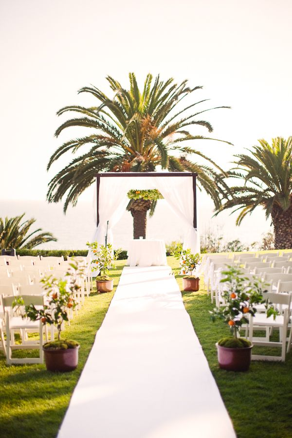 Pretty aisle decorated with citrus trees, a white aisle runner, white parted drapes, and a palm tree as the focal point.