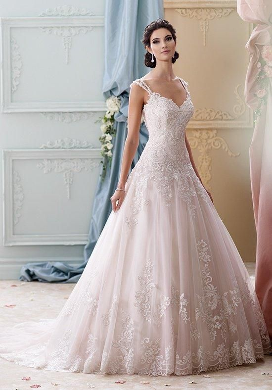 Sleeveless tulle, organza and hand-beaded embroidered lace ball gown with double lace shoulder straps, sweetheart neckline, drop waist and chapel length train | David Tutera for Mon Cheri | https://www.theknot.com/fashion/215277-arwen-david-tutera-for-mon-cheri-wedding-dress | https://moncheribridals.com/collections/wedding-dresses/david-tutera-for-mon-cheri/?utm_source=theknot.com&utm_medium=referral&utm_campaign=theknot&utm_content=gallery