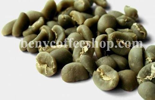 Sumatra Bulk Coffee Beans Wholesale