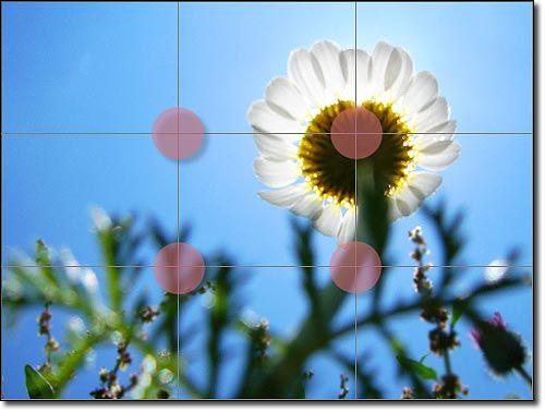 La Regla de los Tercios: Mejora tu Composición Fotográfica