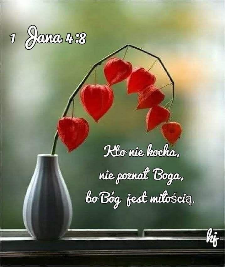 Pin By Ek On Maka Jw Org Faith Jesus
