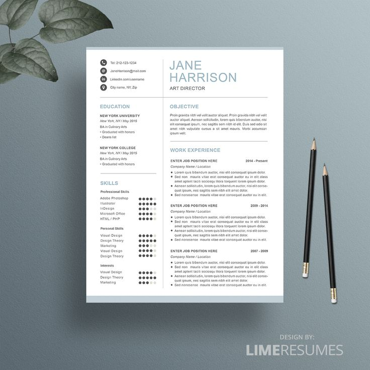 Professional resume template with clear design so