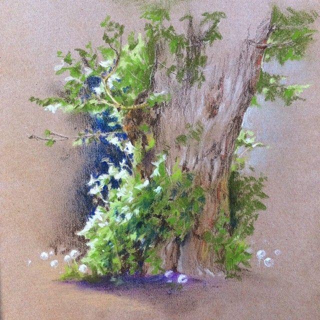 С сегодняшней прогулки )) #безфильтра #рисую #пастель #дерево #покаребенокспит #xaxalerikart #art #drawing #pastel #tree #instaart
