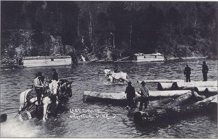 File:Little Pine Creek Log Drive 1905.jpg