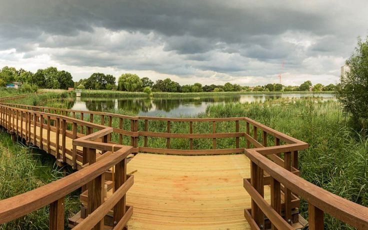 London The Woodberry Wetlands Picture 1