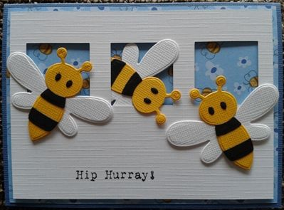 Col1356 Bee & Lady bird