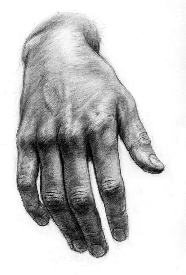 Hände zeichnen Die linke Hand des Künstlers, in der Tat nur seine linke, weil sie im Spiegel zu seiner rechten wird, während seine rechte den Bleistift hält. Zeichnungen von Händen auf klassische Weise und anatomisch untersucht. Darstellungen von Händen in verschiedenen Positionen… – Sophia Steinhuber