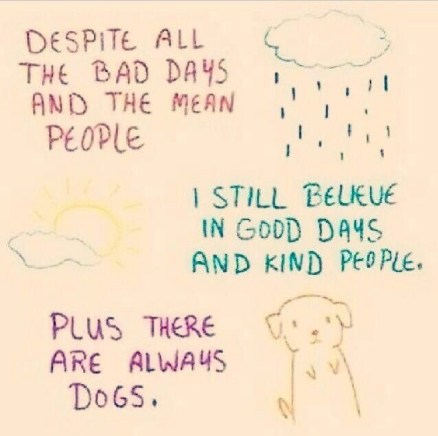 ...plus there are always dogs!