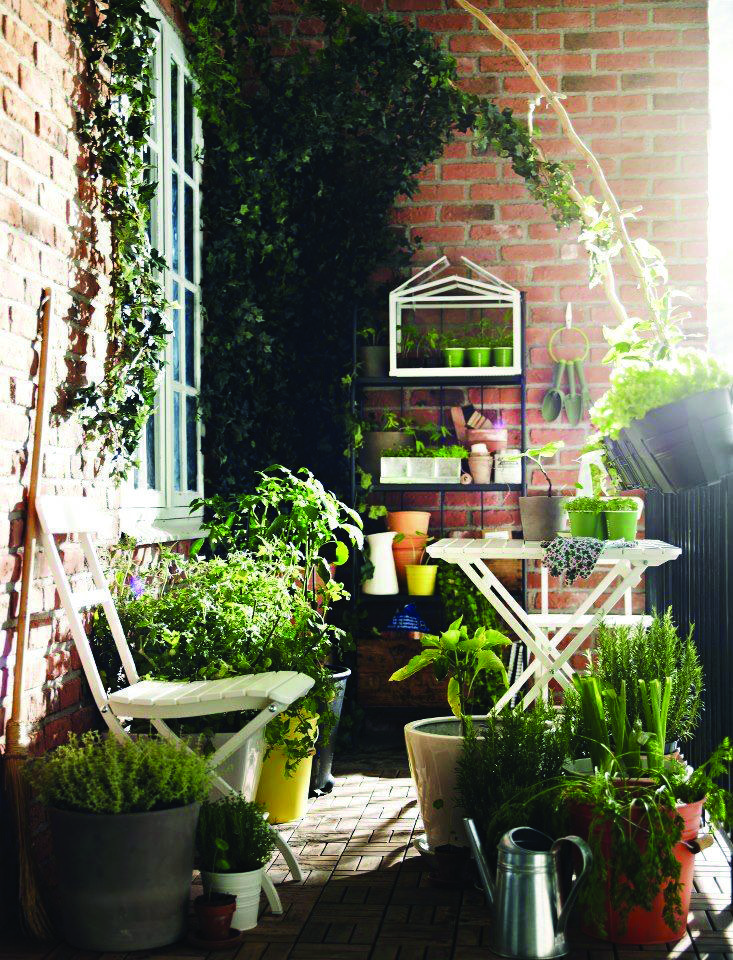 Most Popular Small Flat Balcony Garden Ideas Pictures One And Only Shopyhomes Com Small Balcony Garden Balcony Garden Apartment Balcony Decorating