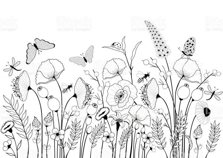 Карта с дикие цветы и бабочки Сток Вектор Стоковая фотография