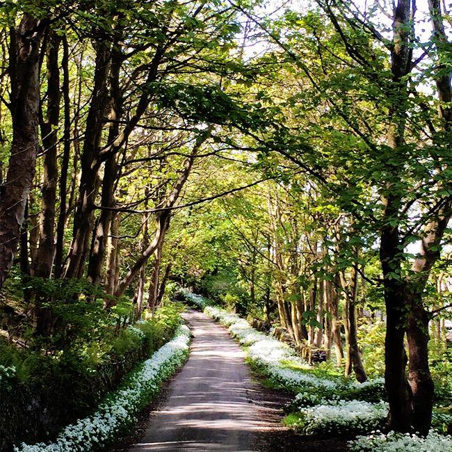 Brockwood Hall, Whicham Valley, Millom, Cumbria, United Kingdom