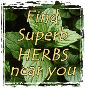 A list of links to tons of herbs. Each page includes how tall they become, what the plant is used for, how to harvest and use them, what kind of pests bother them, and how to cultivate and propagate the herb