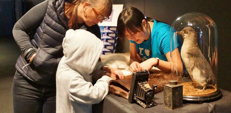 Sydney - Visitors and museum staff investigating Antarctic objects.